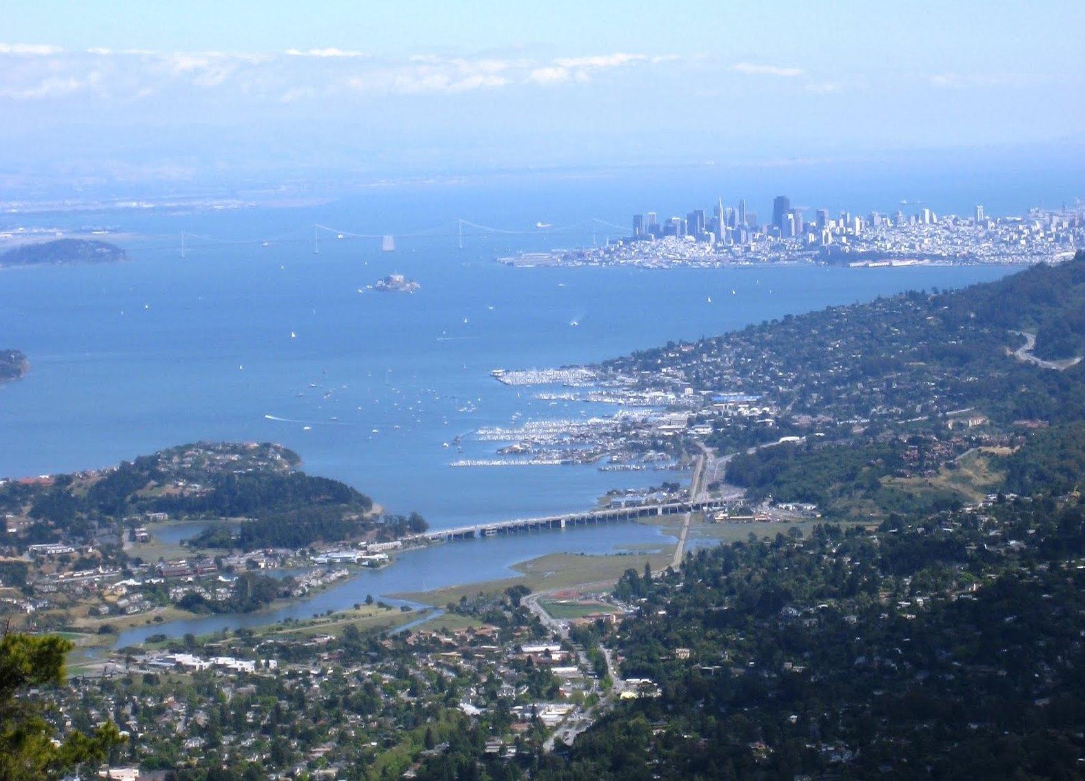 Marin County Redwood Appraisal